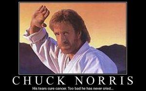 38370_Chuck-Norris-640